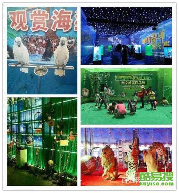 南京神獸羊駝萌寵展暖場互動